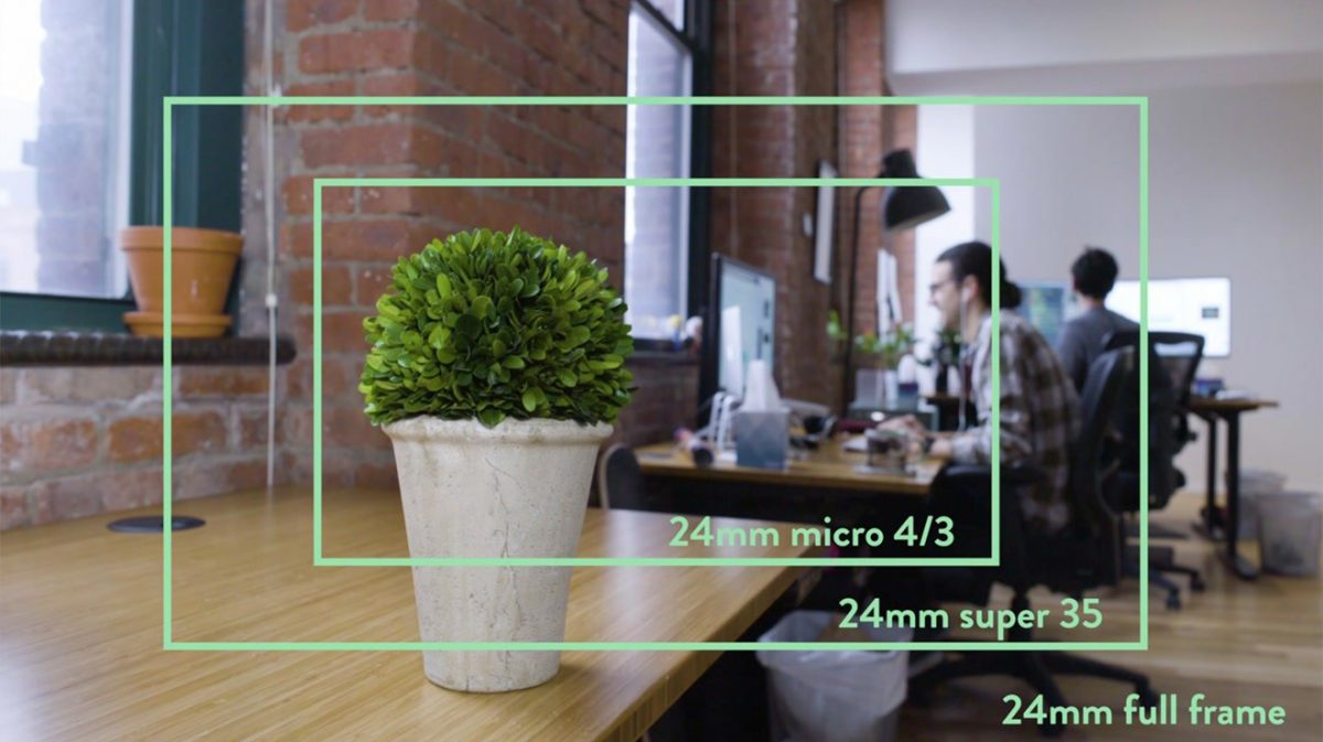 All About Camera Sensors