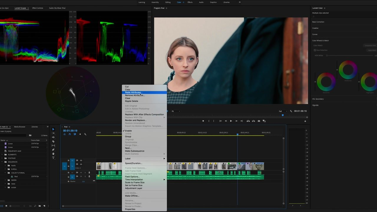 Paste Attributes Color Grading Adobe Premiere