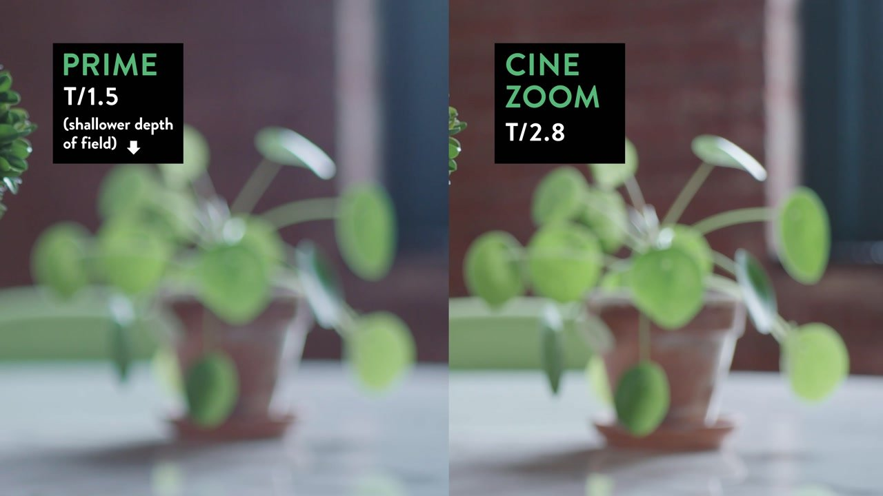 prime vs zoom depth of field comparison